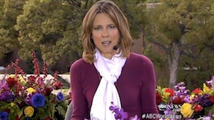 hannah storm grill safety